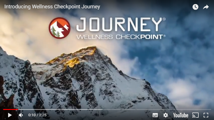Wellness Checkpoint Journey